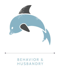 behavior_icon