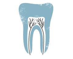 dental_icon2